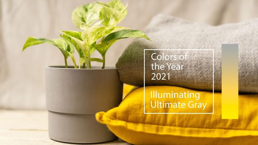 Quelles sont les couleurs à adopter en 2021 ?